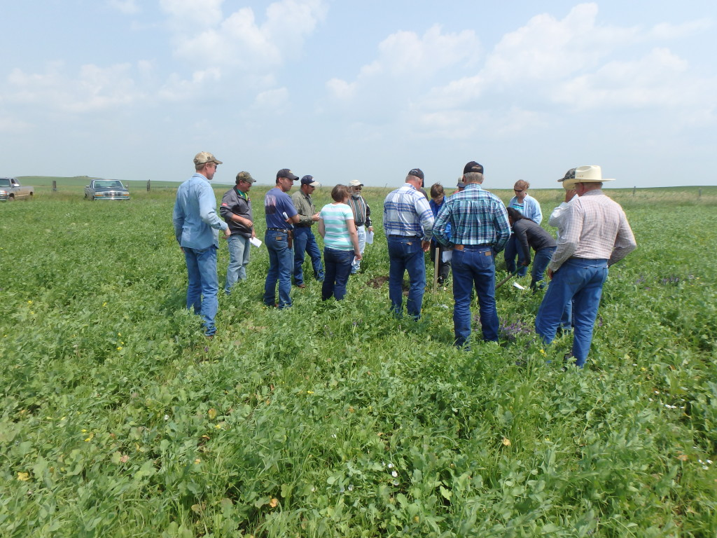 Soil Health Mentoring Tour